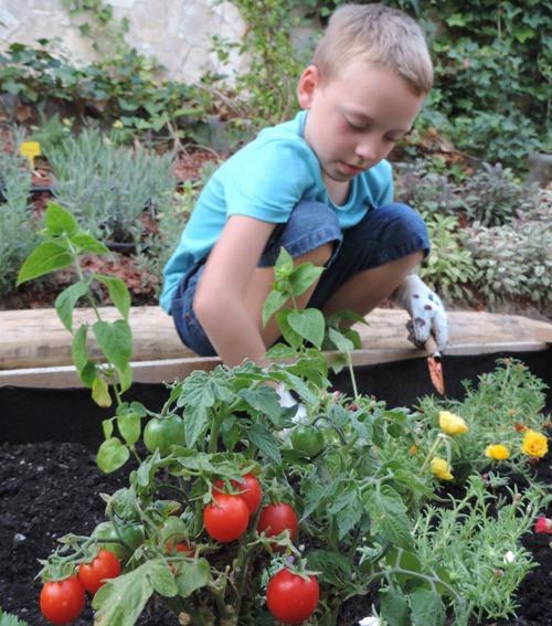 Botanicon kertésztábor